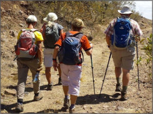 Four of hikers heading down the trail with back packs on.