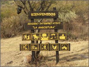 Typical international hiking sign using global symbols for information.